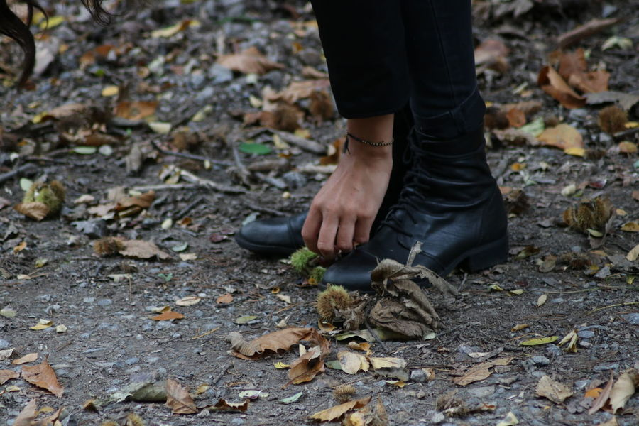Authentic Moments Autumn Boots Chestnut Fall Beauty Nature Chestnut - Food Collect Up Day Fall Human Body Part Human Feet Human Finger Human Hand Human Leg One Person Outdoors Pick Up Real People