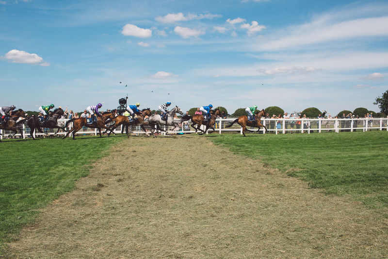Cloud - Sky Competition Competitive Sport Day Domestic Animals Epsom Downs Racecourse Field Grass Horse Horse Racing Horseback Riding Jockey Large Group Of Animals Livestock Mammal Men Nature Outdoors People Real People Running Sky Sport
