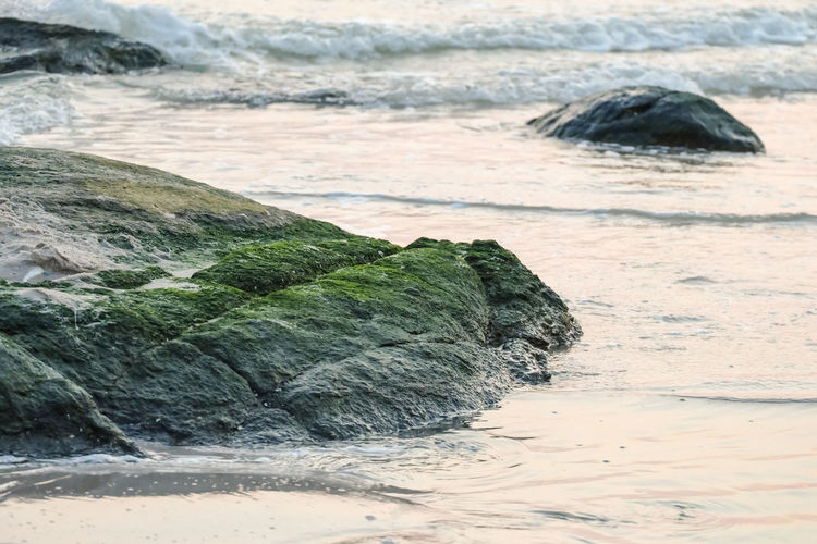Wave Beach Sea