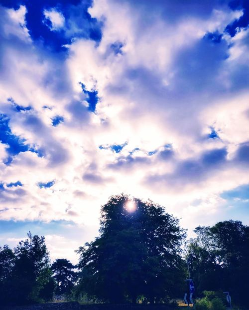 stunning morning Photowalktheworld Cloud Cloudy Day Manipulation Surreal Amazing Nature Storms Coming Morning Sunlight Morning Sky Sunlight Tree Blue Silhouette Sky Cloud - Sky Woods Forest WoodLand Tree Trunk Bark