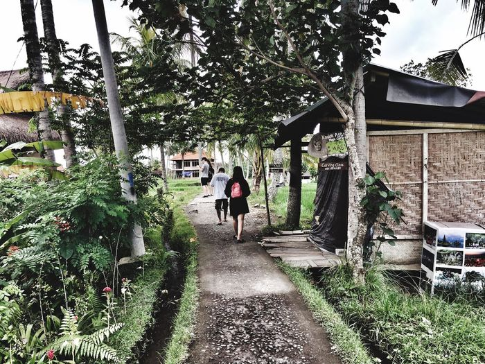 Village Rear