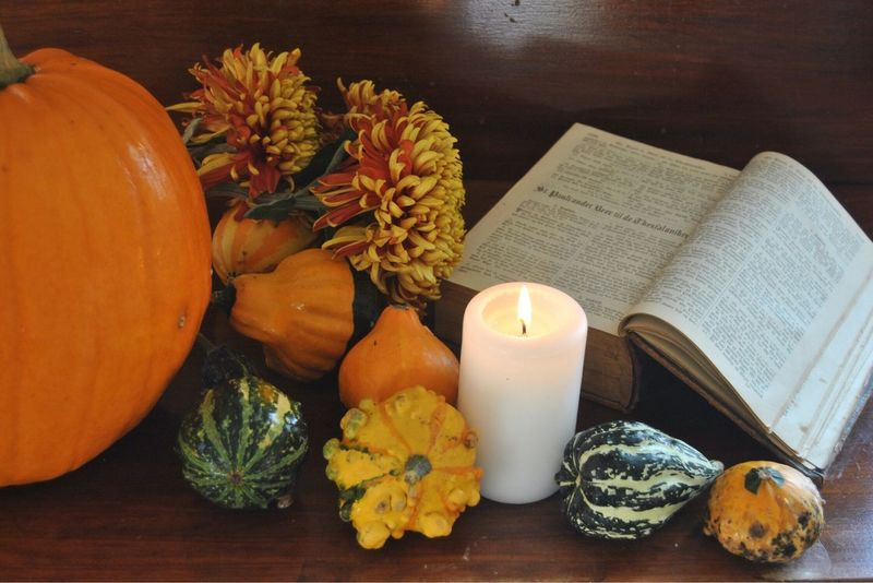 Thanksgiving Thanksgod Thanks  Pumpkins Pumpkin Plant Fall Autumn Flowers Autumn Colors Bible Verses Bible Biblestudy Bible Collection Fall Colors Thanksgiving Day Thanks♥ Thank Thanks God