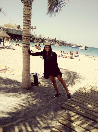 Vodkacupcake Beach Palmtree