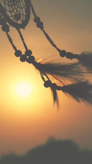 Dream catcher native american in the wind and blurred bright light background, hope and dream concept Good Luck Charm Good Luck Hopes And Dreams Abstract Dreamcatcher Crop  Landscape Growth Close-up Hanging Outdoors Low Angle View Sunlight Tranquil Scene Scenics - Nature Plant Nature Orange Color No People Tranquility Beauty In Nature Silhouette Sun Sky Sunset Idyllic