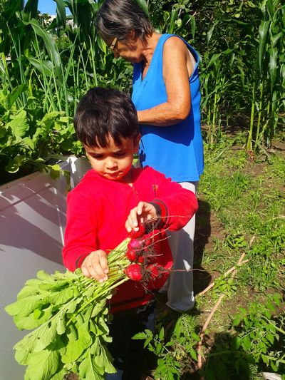 Boy by grandmother holding radishes at yard