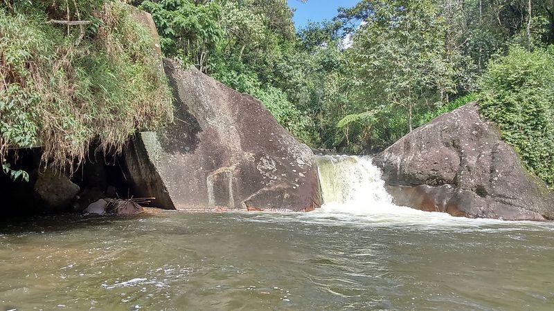 Brazil Itatiaianationalpark EyeEm EyeEmNewHere Water Tree Nature No People Day Beauty In Nature
