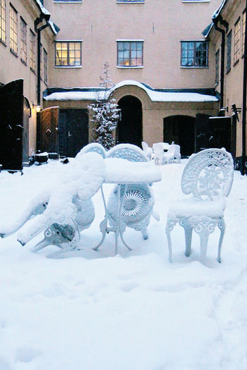 Cold Cold Temperature Old Snow Wall Wall - Building Feature Weather White Winter Winter Wintergarden Wintertime