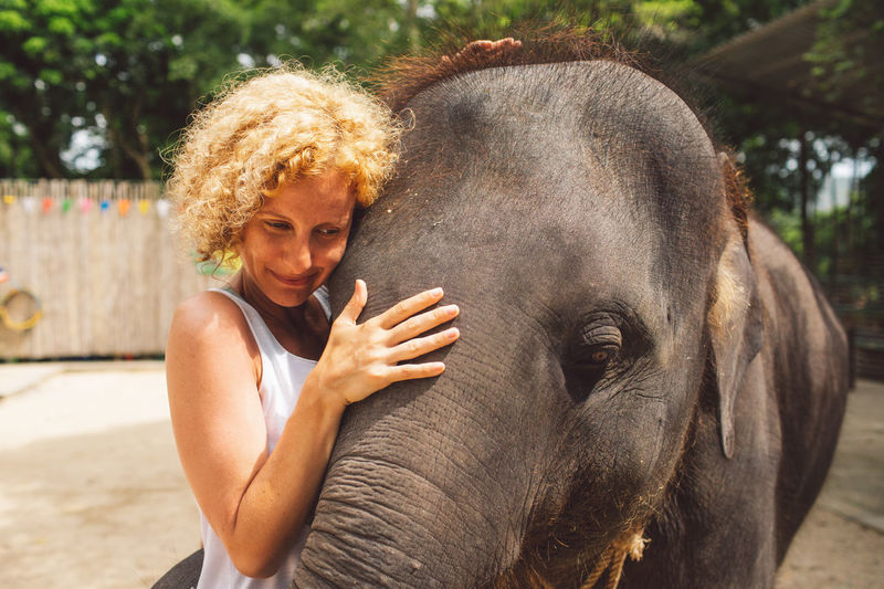 Curly Hair Girl Elephant One Person Mammal Real People Day Women Animal Wildlife Lifestyles One Animal Focus On Foreground Vertebrate Sunlight Adult Hair Domestic Animals Leisure Activity Animal Body Part Outdoors Hairstyle Herbivorous