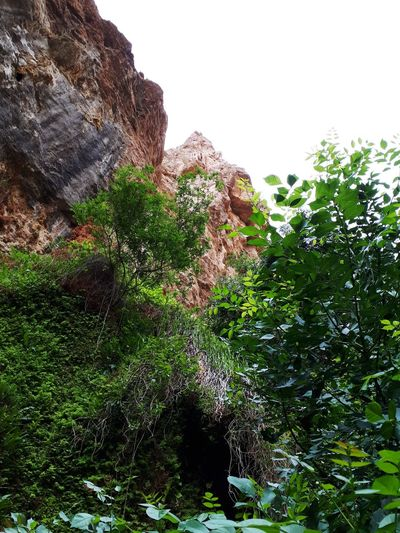 Nature طبیعت ایران Iran Mountain Tree Sky Green Color Rocky Mountains