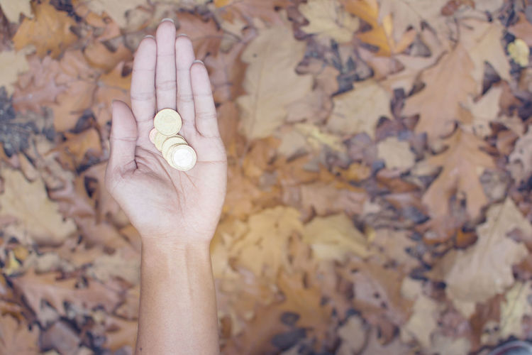 Close-up of woman hand holding coins over dry leaves on field during autumn