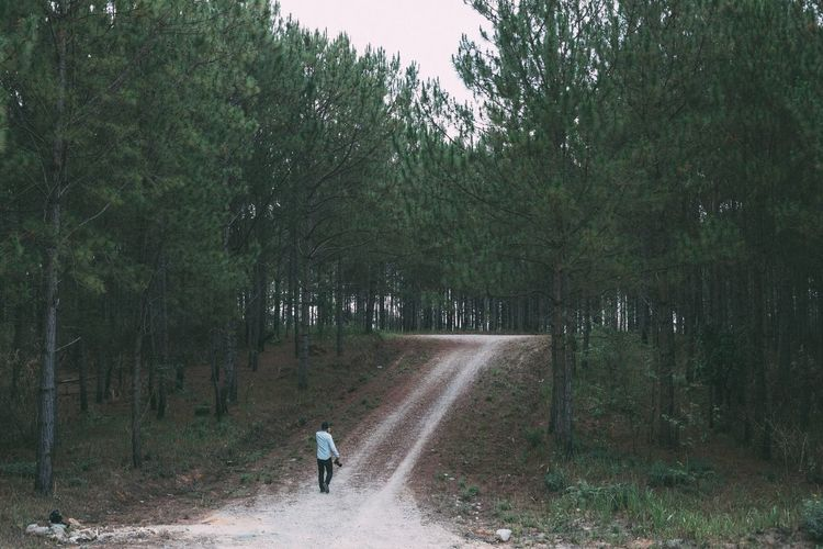 Man walking on road in forest