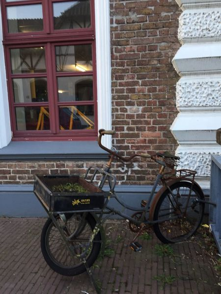 Bicycle Window Mode Of Transport Transportation Building Exterior No People Kalkar Germany Eyem Gallery Eyem Best Shots Bycicle Bike Outdoors Stationary Day