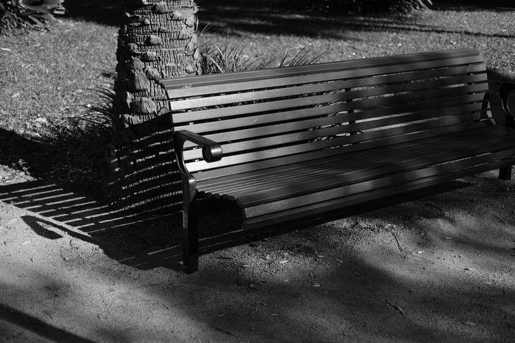 Absence Beauty