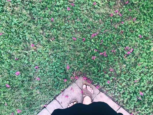 Feet visible under dress flowing in the wind on the edge of a path. Path making an arrow forward and person ready to go off the beaten path. Grass Low Section High Angle View Day Outdoors Human Body Part Human Leg Standing Green Color Nature Flower One Person One Woman Only Freshness Adult Adults Only Close-up People The Way Forward Off The Beaten Path Possibilities  Concept Real People Copy Space Woman