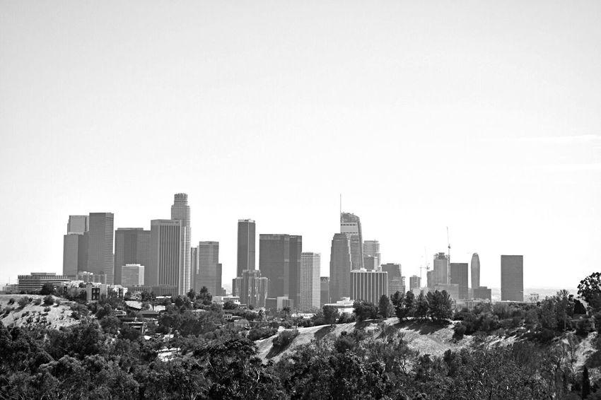 This Amazing Land Image Diverse City Black&WhiteMatter Love It Mercury Monochrome