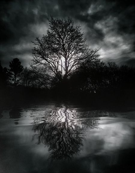 Tree Porn Evening Sky Foggy Evening Clouds And Trees Lake Reflection Fine Art Photography Water Reflections Tree And Sky Tree Reflection  Foggy Sunset Black And White Night Night Photography From My Point Of View EyeEm Masterclass Fine Art Cloud Reflections Outdoor Photography Connecticut River Black And White Photography Cloud Porn Tree Silhouette Silhouette Creepy Monochrome Photography Cloudporn Been There. Black And White Friday