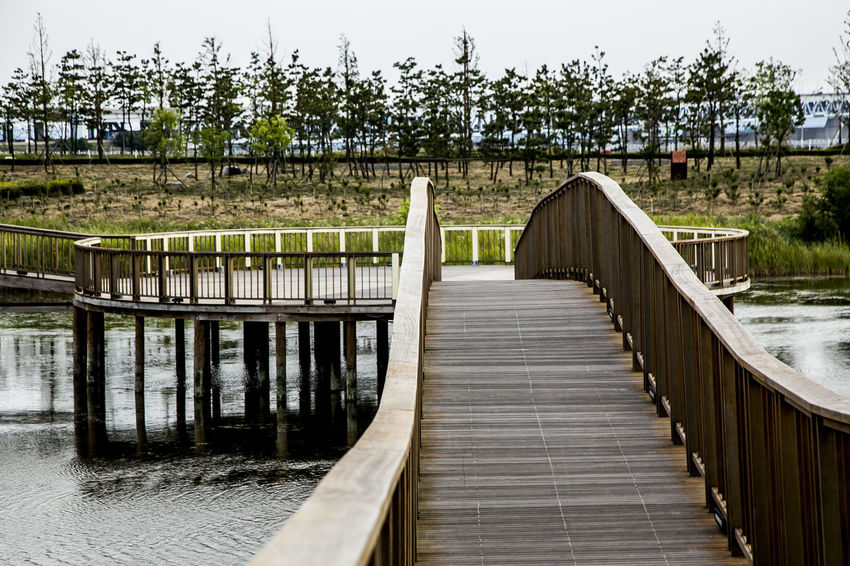 Absence Arabatgil Architecture Bridge Bridge - Man Made Structure Building Exterior Built Structure Column Composition Connection Diminishing Perspective Fence In A Row Leading Long Narrow Park Perspective Railing The Way Forward Walkway Wood