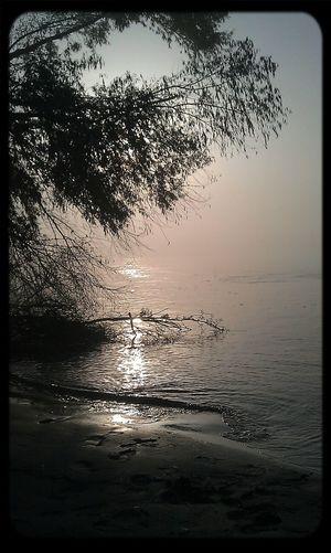 Melancholic Landscapes Foggy Morning