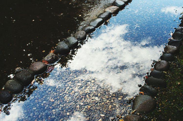杉並木街道Nikko 日光 Japan Photography EyeEm Gallery EyeEm Japan Nature Nature Photography Clouds And Sky