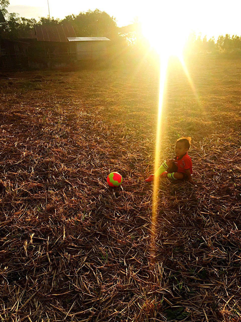 sunlight, lens flare, sunbeam, outdoors, no people, sun, nature, day