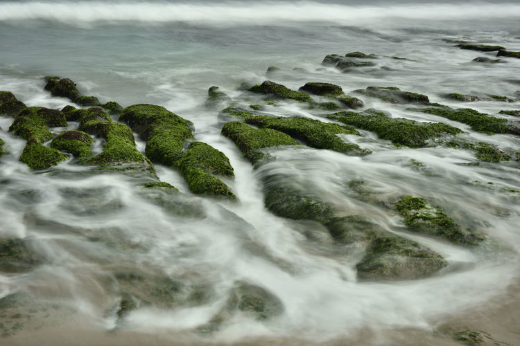 Coastal green rocky landscape with surf beach. Motion Sea Water Sport Beauty In Nature Aquatic Sport Long Exposure Scenics - Nature Surfing Land Nature Wave Blurred Motion Day Rock Beach Outdoors Solid Flowing Water Surface Level Flowing Algae Water Fresh Slow Shutter Running Water