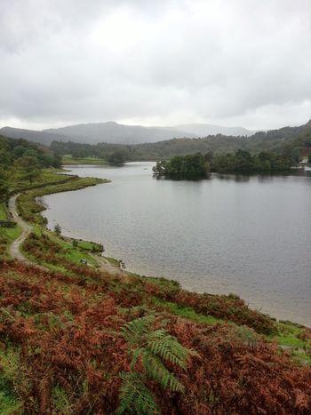 Rydal Water Cumbria Cloud - Sky Landscape Lake Tranquil Scene Water