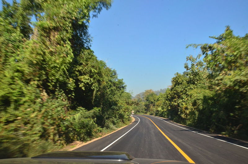 Road amidst trees against clear sky