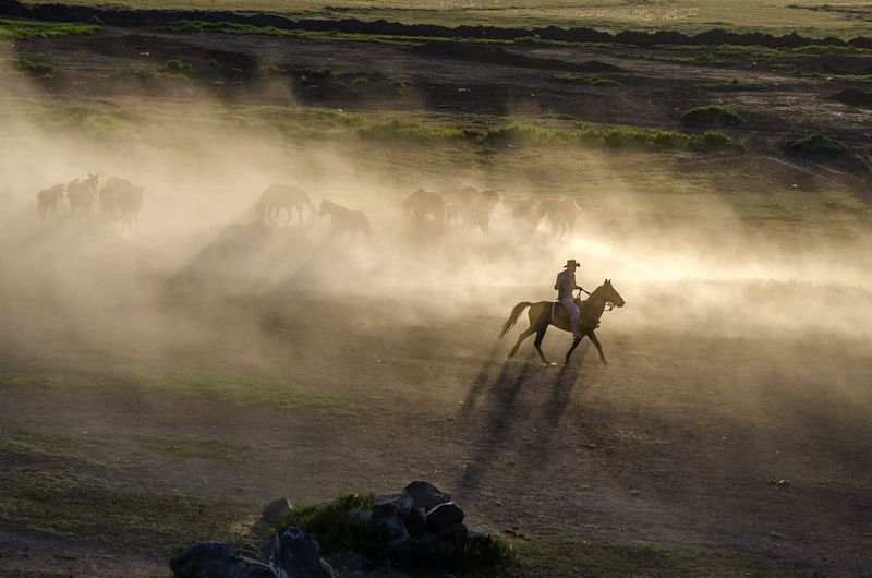 People riding a horse on land