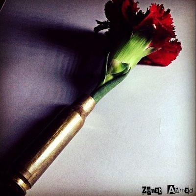 Gaza Palestine Photographer Instgram تصوير  تصويري  صورة صور_من_غزة صورتي غزة فلسطين الحب_والحرب