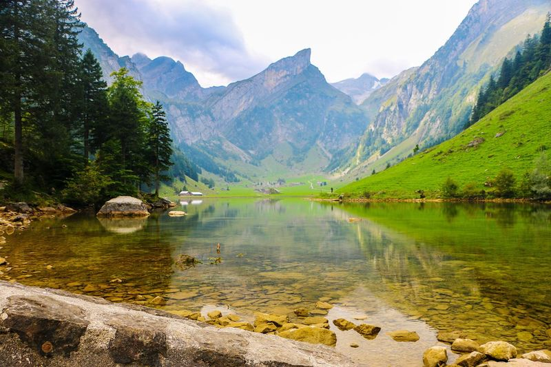 Mountain Water Tranquil Scene Tree Scenics Tranquility Beauty In Nature Forest Mountain Range Non-urban Scene Lake Reflection Nature Idyllic Green Color Majestic Travel Destinations Tourism Vacations Sky Landscape Photography Landscape_Collection Landscape Photography Beauty In Nature