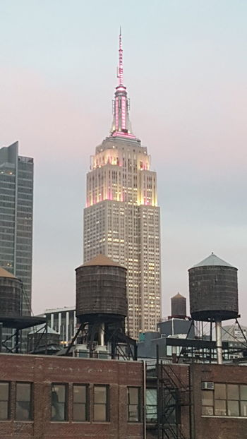Unfiltered Magenta NYC