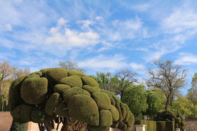 Panoramic shot of sculpture against sky