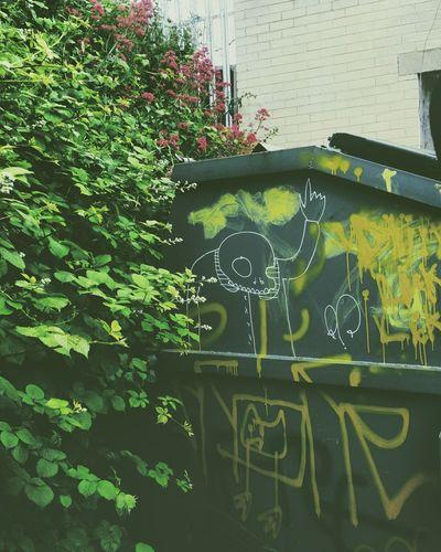 Music Studio  Outdoors Grafitti Nature