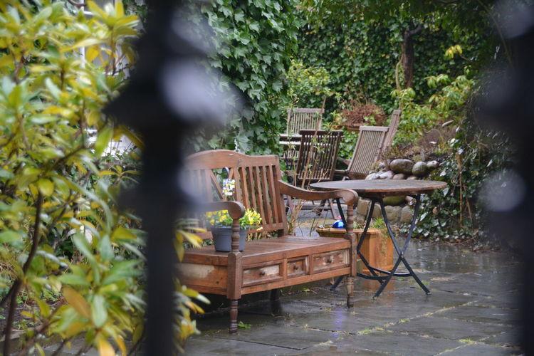 Home design patio wood furniture near lush