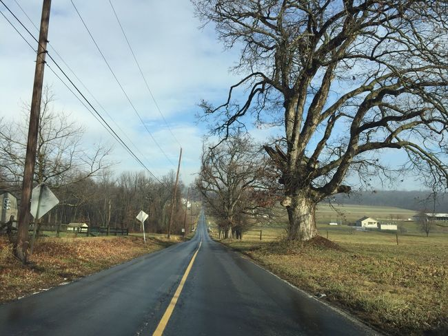 My drive in the country. Road The Way Forward Tree Nature Sky Outdoors Uncropped EyeEmNewHere