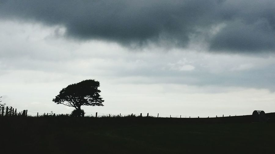 Silhouette Cloud - Sky Tree Beauty In Nature Landscape Outdoors Nature No People Day Clouds And Sky Cloud Cloudy Day Grey Gray Preseli Hills Wales Pembrokeshire Samsung Galaxy S5 Crymych Frenni Fawr