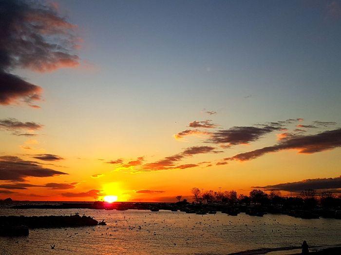 istanbul Bostancı Twilight No Filter, No Edit, Just Photography Autumn Istanbul Beauty Sunset Marmarasea Marmara Kadıköy Crimson Sea Cloud Cloud - Sky