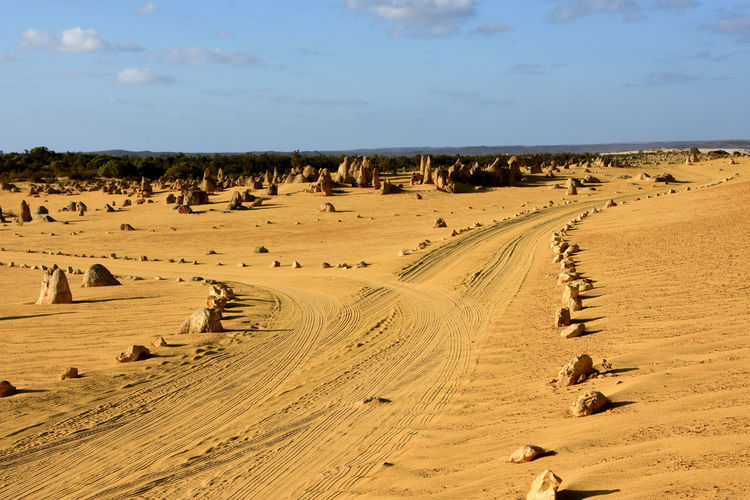 Tire tracks on sand dune in desert against sky