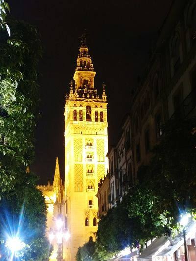 Night Illuminated Tower Architecture Travel Destinations Clock Tower No People Cultures City Sevilla, España Turistic Places Streetphotography Walking Around SPAIN City Life Lifestyle Thinking About Life Architecture Architecturephotography Quiet Moments Giralda Cathedral Cathedral Catolicism Church Nightphotography