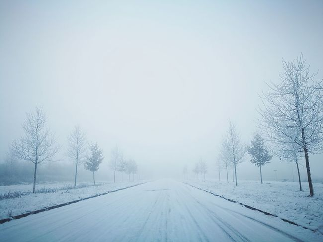 Snow Cold Temperature Winter Fog Road No People Outdoors Extreme Weather Snowy Day Winter Wonderland Nature Photography Snowy Trees Icy Road White Cozy Winter Mystery Atmosphere Snowflake Snowing Tire Track No Filter No Edit NoEditNoFilter