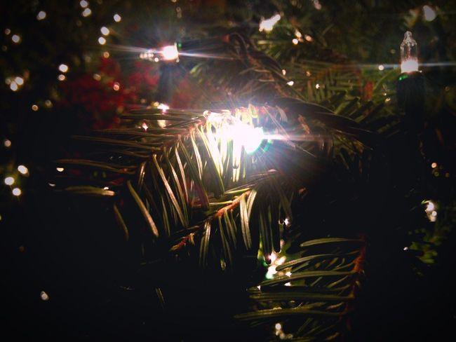 Virginia Lights Christmas Town