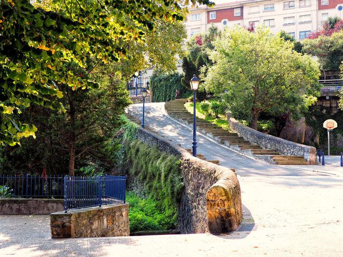 Trees by footpath in park against buildings in city