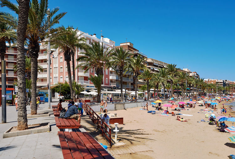 Torrevieja, Spain - July 10, 2017: Promenade near the Playa del Cura in Torrevieja city at summertime. Costa Blanca. Spain Alicante Province Spain City Costa Blanca Holiday PLAYA DEL CURA SPAIN Summertime Torrevieja Vacations Architecture Beach Building Exterior Built Structure Day Large Group Of People Nature Outdoors Palm Trees People Real People Summer Sunny Day Tourism Tourist Resort Travel Destinations