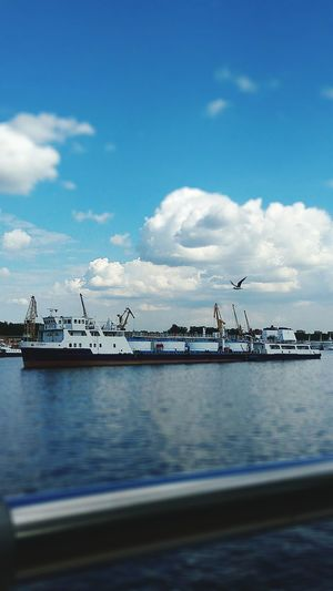 Sea Water Cloud - Sky Day No People Sky Nature Flock Of Birds Bird Beach Horizon Over Water Beauty In Nature Moscow Ship Москварека корабль Ships⚓️⛵️🚢 Москва река Чайка