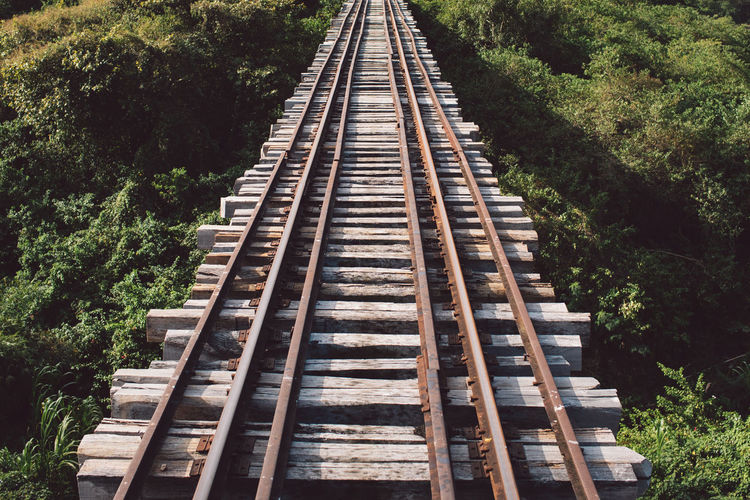High angle view of railroad tracks amidst trees in forest