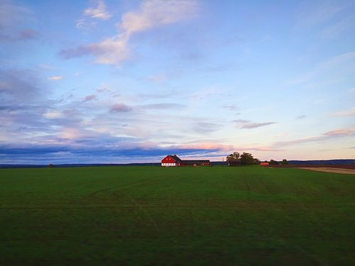 Norway Norgeibilder Farm Sky Green Contrast Contrasting Colors Nature Nature_collection Nature Photography