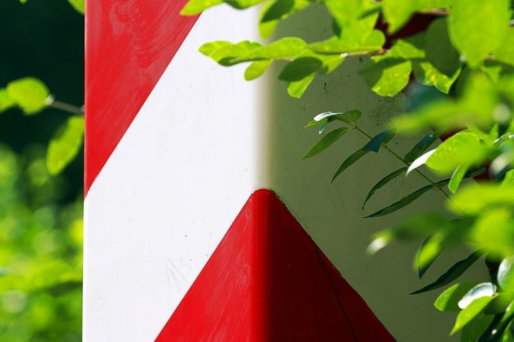 Border Border Post Close-up Focus On Foreground Leaf No People Outdoors Plant Part Polish Border Red And White And Green