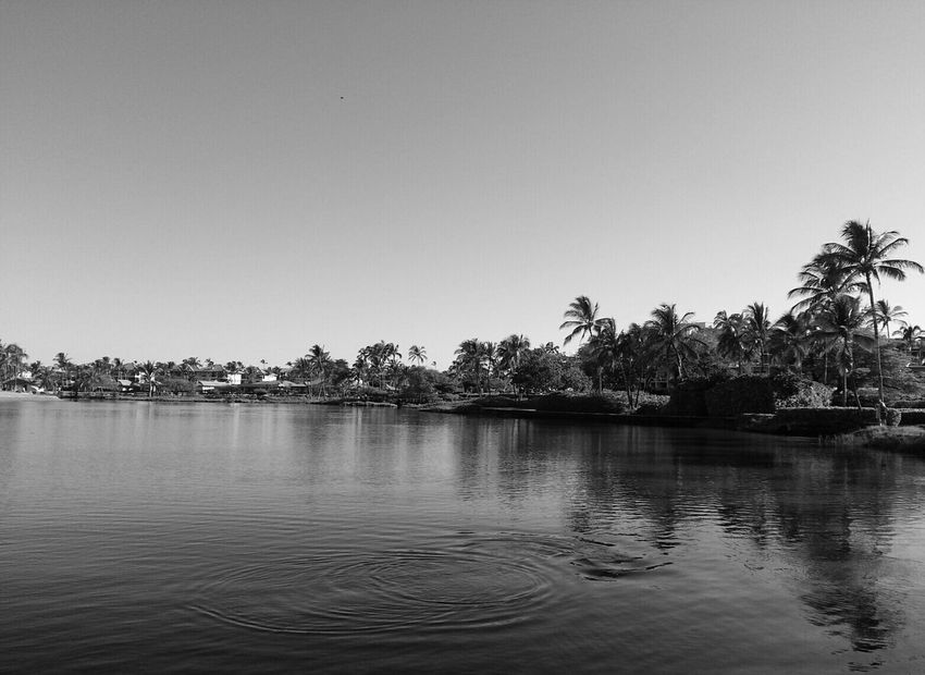 Lagoon reflection Monochrome Black And White Light And Shadow Beach Life