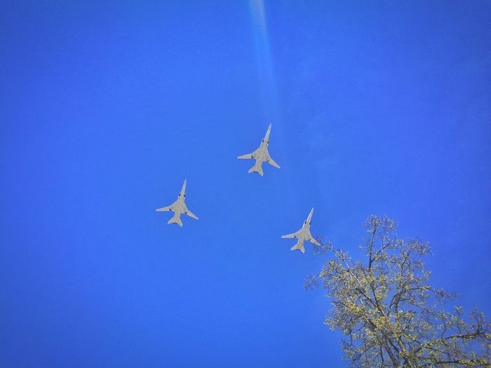 Rehearsal For The Victory Day Military Parade Planes Sky Right Now