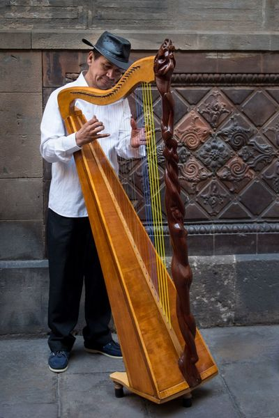 The Street Photographer - 2017 EyeEm Awards Arpa Musician Music Performance One Person Arts Culture And Entertainment Men Playing Musical Instrument Outdoors One Man Only Musical Instrument String Adult Music Artist Outdoor Streetphotography Harp